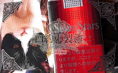 Seven_Stars_Real_Rich_01e
