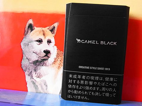 Camel Black Box