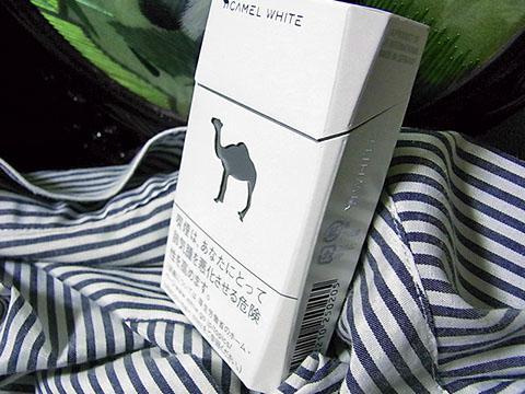 Camel White Box