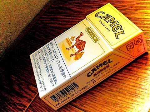 Camel Mild Box