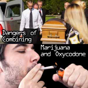 http://www.oxycodoneaddictionhelp.com/