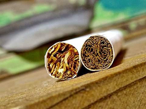 IQOS Marlboro Heat Sticks Mint