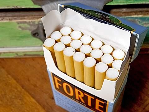 Forte Lights