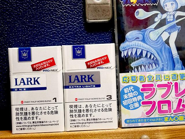 lark_test_report_03c