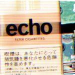 Echo (New) を吸ってみた