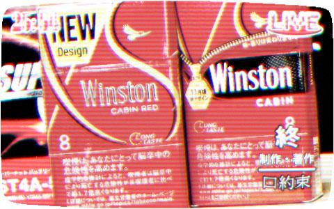 winston_cabin_test_report_e